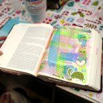 LifeWay Bible journaling Bible