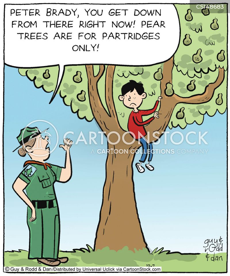 Tree Climbing Cartoons And Comics Funny Pictures From