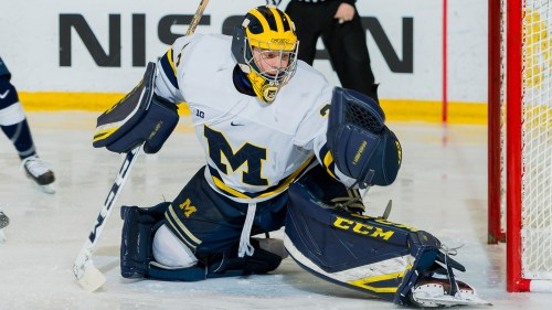 Image result for umich club hockey