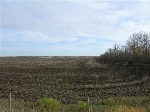 Main Photo: : Rural Leduc County Rural Land/Vacant Lot for sale : MLS® # E3394859
