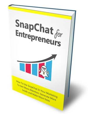 Snapchat for Entrepreneurs