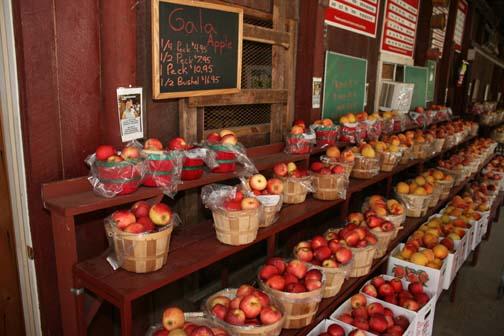 Lynchburg Farm Fresh Market Va