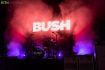 Bush_ME-40