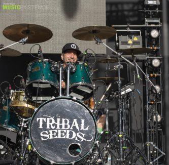 Tribal Seeds_ME-6