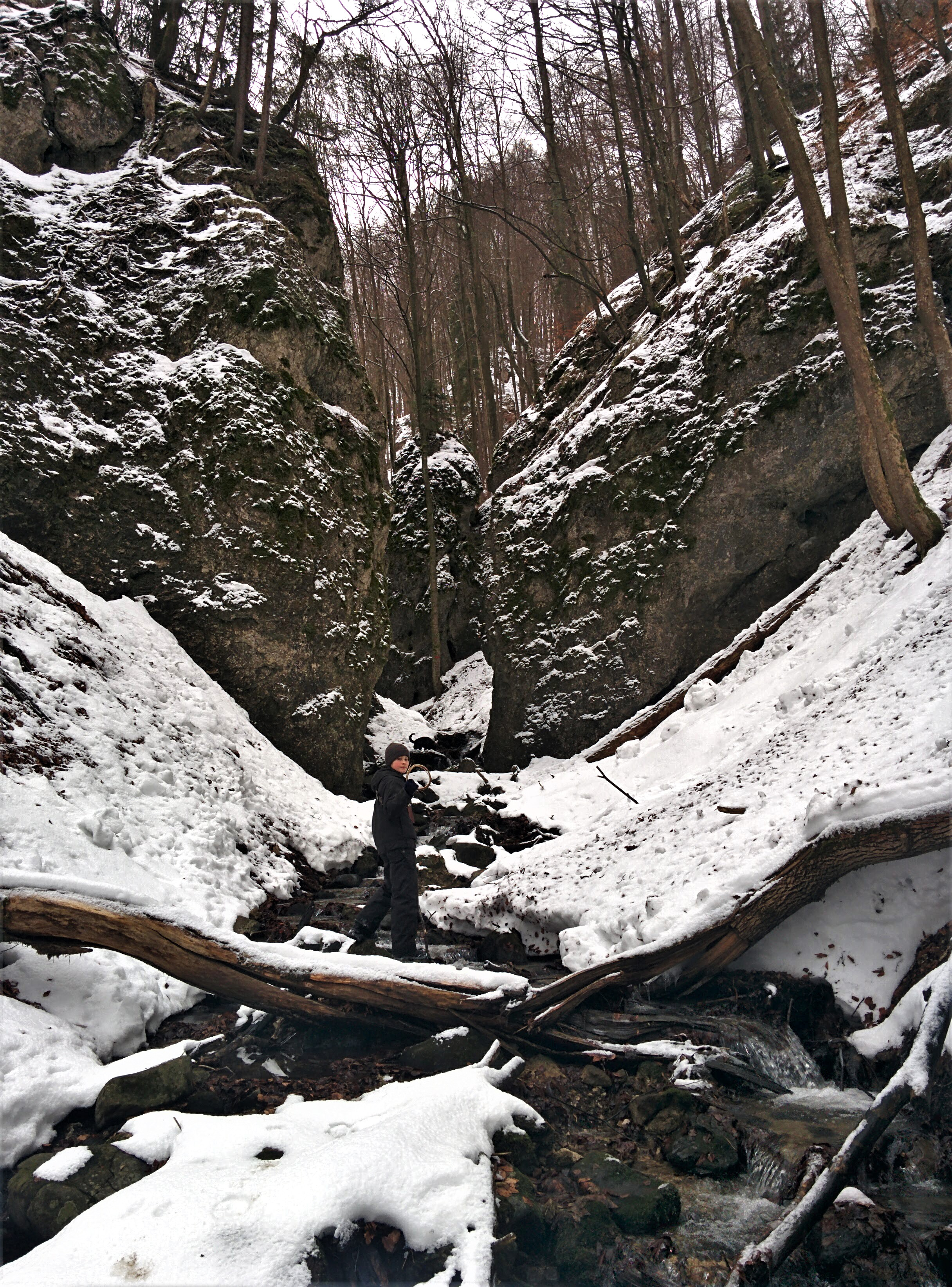 Entering Snake's Canyon from the east. This is in the valley of Fintova Hill which is near our property.