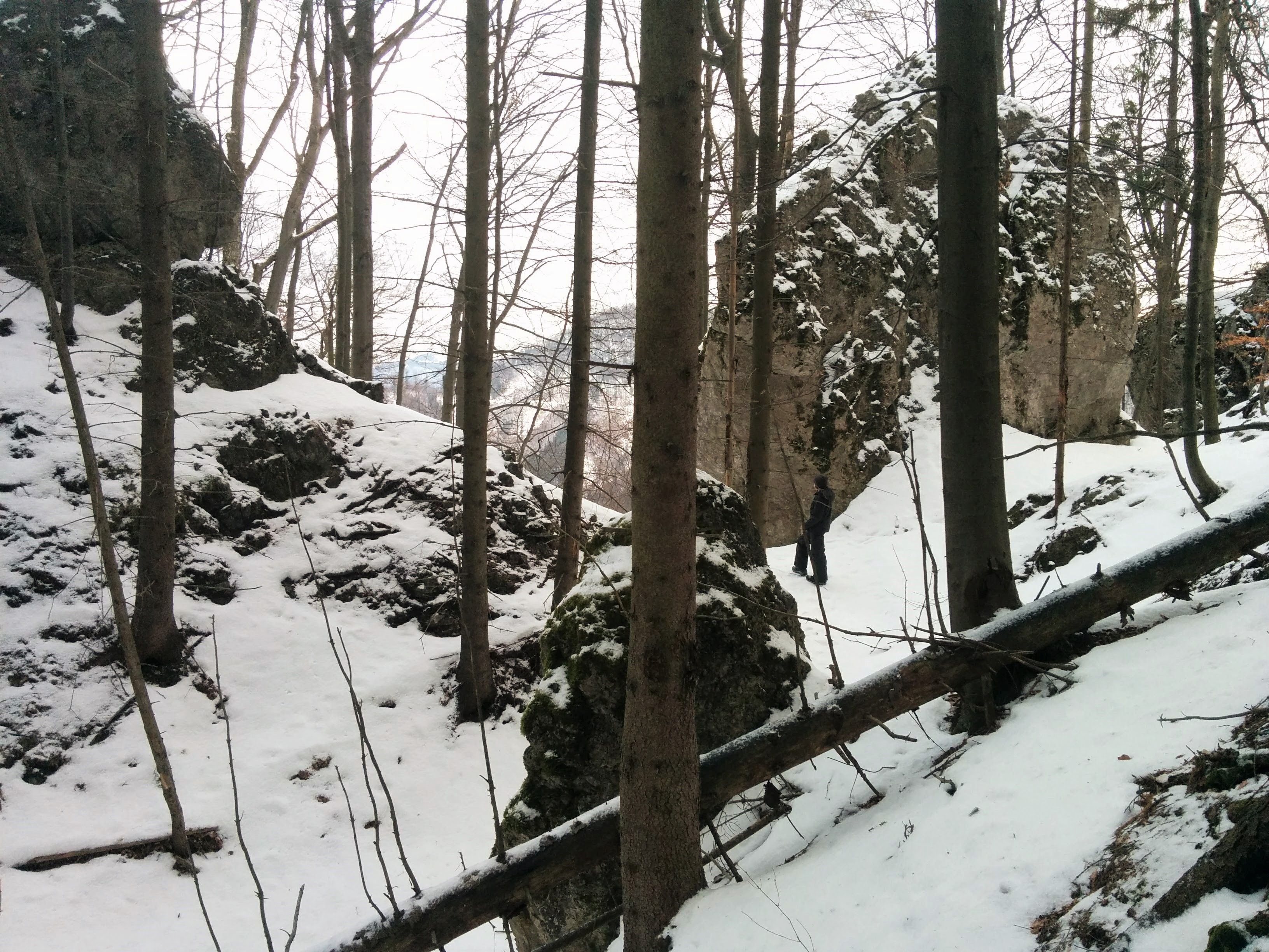 The top of Fintova. The hill is full of cliffs like this.