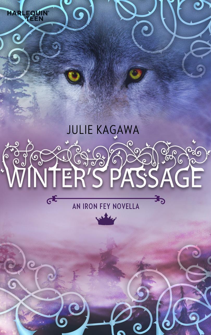 Winter's Passage
