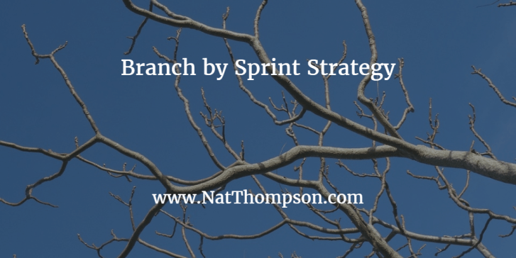 branch by sprint strategy