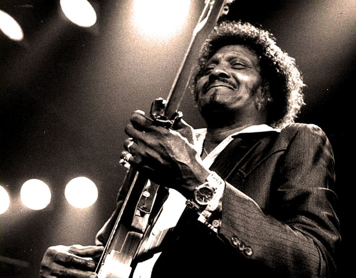 Albert Collins - Master of The Telecaster.