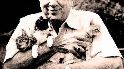 Walter Cronkite and kittens