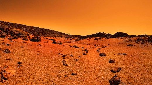 Mars Polar Lander