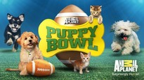 Puppy bowl release date 645