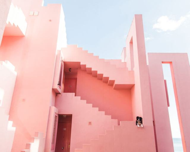 A dog on a pink staircase in Calpe, Spain