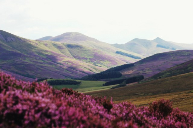 A moor and mountains in Scotland