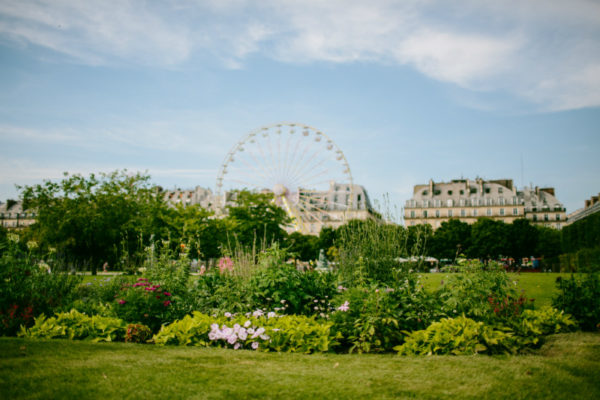 The Tuileries Gardens in the French capital.