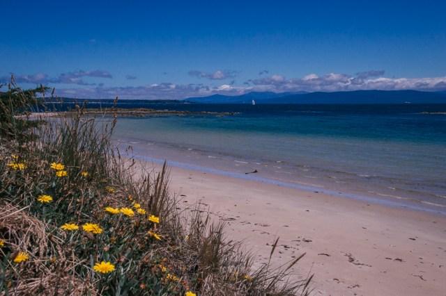 A beach coastline along Bruny Island in Tasmania, Australia