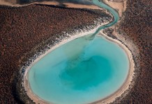 Aerial Drone Shot of Circular Shark Bay, Australia