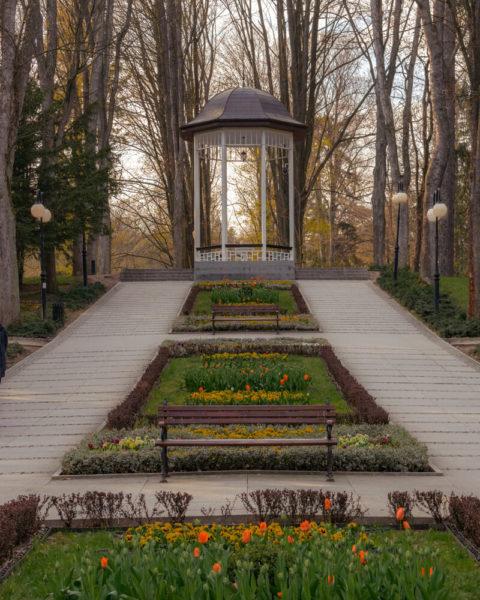 a garden view in polanica, a polish health resort