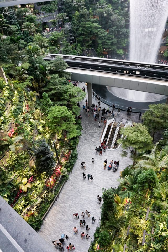 a pathway surrounded by greenery at singapore's changi airport