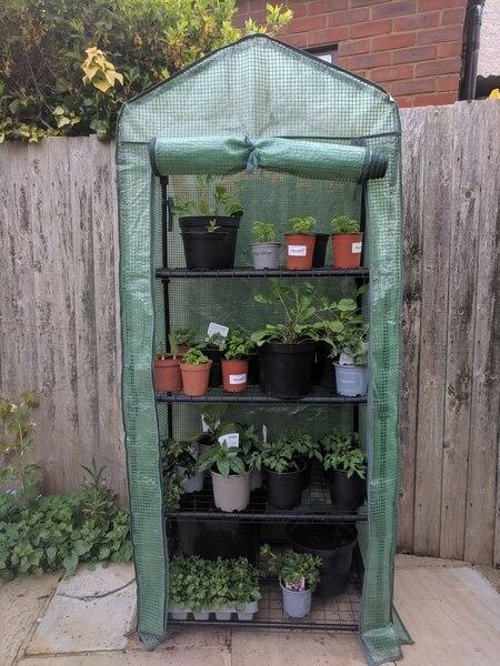 vertical greenhouse in a garden