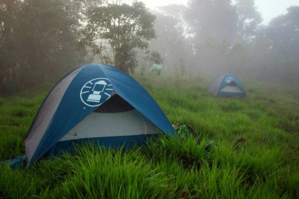 tents in foggy field