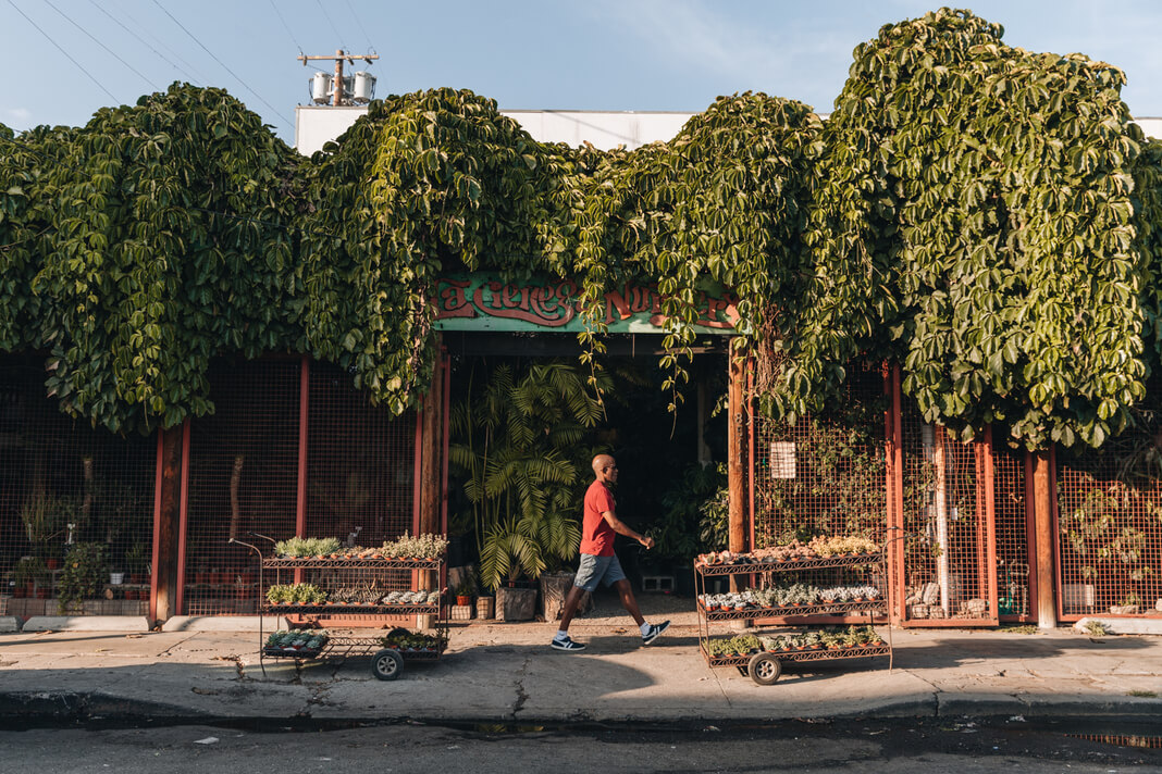 man strolling past flower shop
