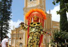 masked carnival performer in brazil