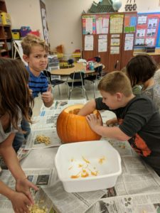 Students pulling the insides out of a pumpkin.