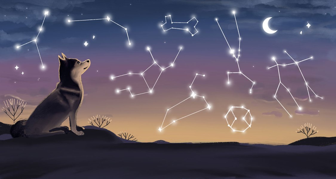 Dog Zodiac Signs: What Your Dogs' Astrology Signs Says About Their Personality