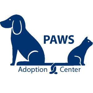 Image of: Performing Animal Image Image Gma Network Pets For Adoption At The Progressive Animal Welfare Society paws