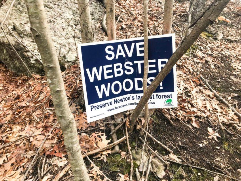 Newton Mayor Seeks $15.7 Million to Take Land from BC Via Eminent Domain