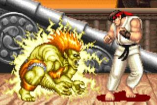 Image result for street fighter blanka
