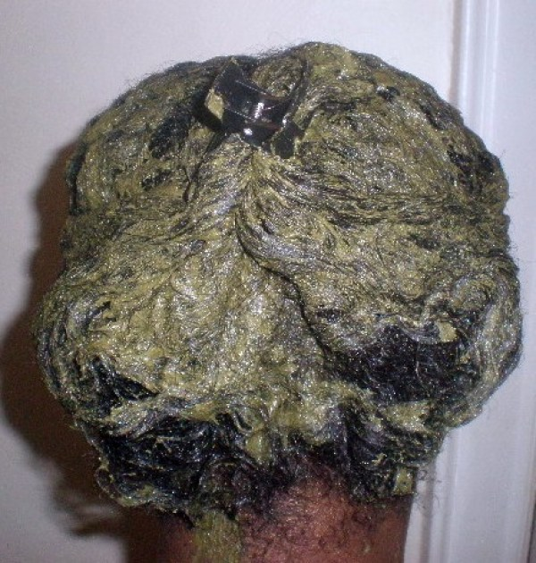 zizyphus on back of hair