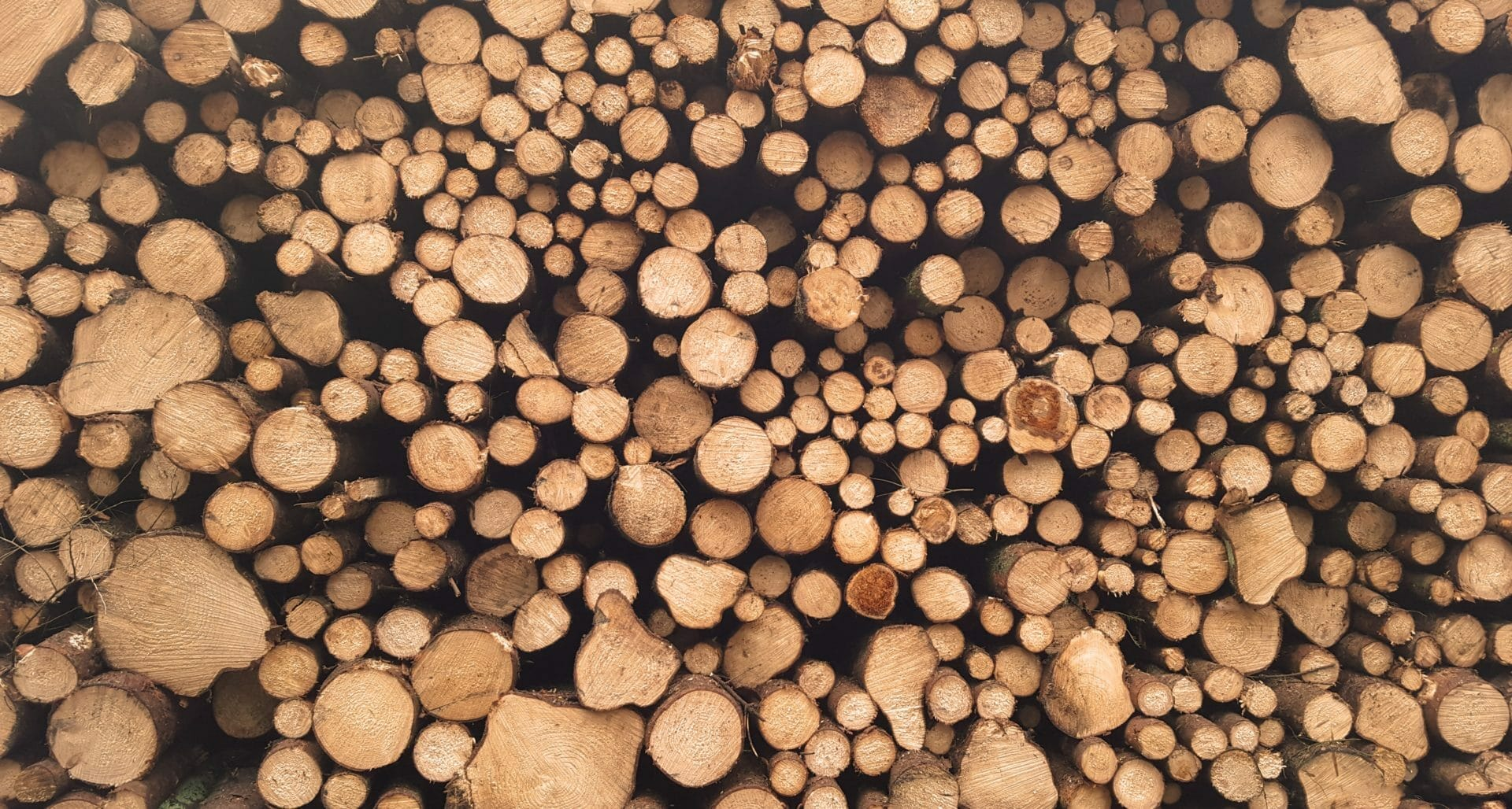 picture of timber for for Real Estate News for Investors Podcast Episode #330