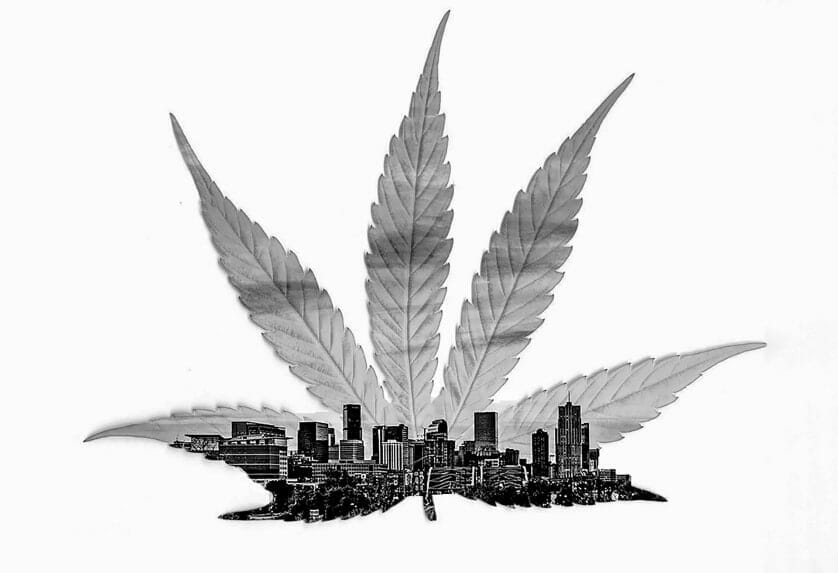 Do Property Values Get High from Weed - Article Header Image