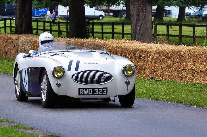 austin-healey-100s-robert-waterhouse