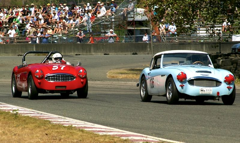 Austin-Healey 100-6's in turn 5