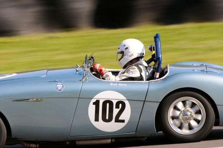 1956 Austin Healey BN2, Rick Neves.
