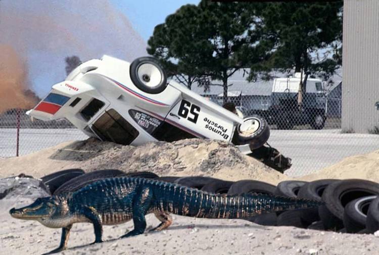 """The alligator known as """"Big Mo"""" crosses in front of photographer Dave Kutz after causing the accident that eliminated Peter Gregg's Porsche from the race.  (Dave Kutz photo)"""