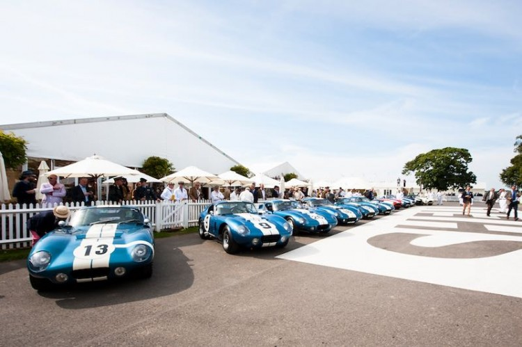Every original Shelby Daytona Coupe lines up at Goodwood (photo: Matt Jacques)