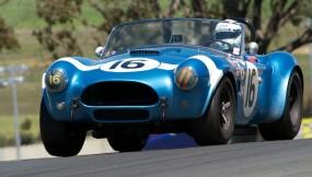 Lynn Park's 1964 Cobra 289