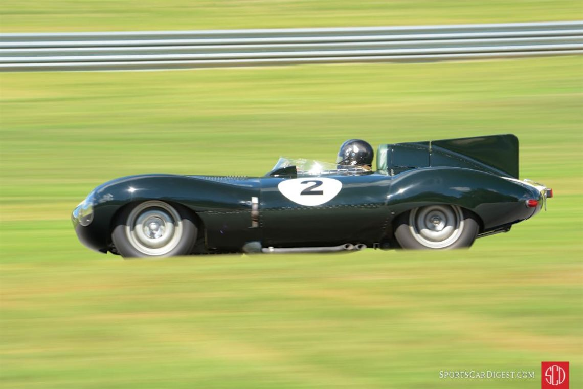 1955 Jaguar D-Type- Dan Ghose.