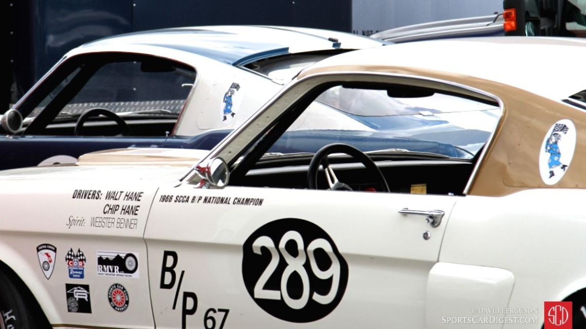 Shelby Mustang GT350s