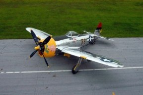P-47 Thunderbolt Parked photo from above