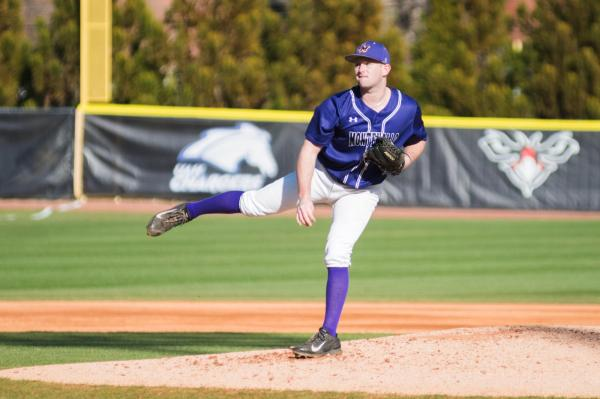 Falcons Sweep Doubleheader with Tigers - University of ...