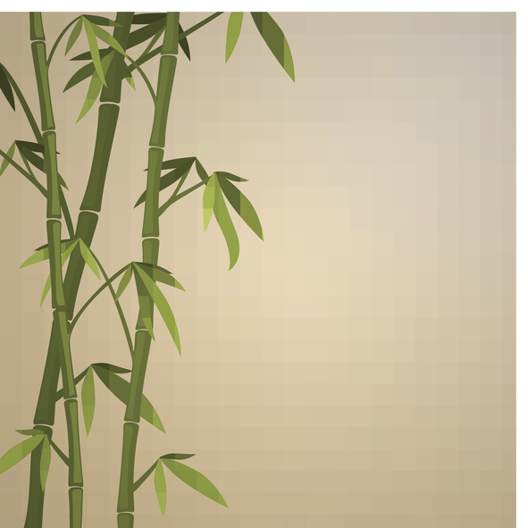 bamboo-window-coverings-gallery-of-shades.jpg