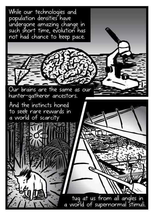 Supernormal stimuli comic - part 12