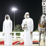 Sharjah Arabian Horse Festival Straight Egyptian 2020 Dubai Arabian Horse Stud