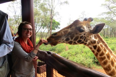Feeding the Giraffe