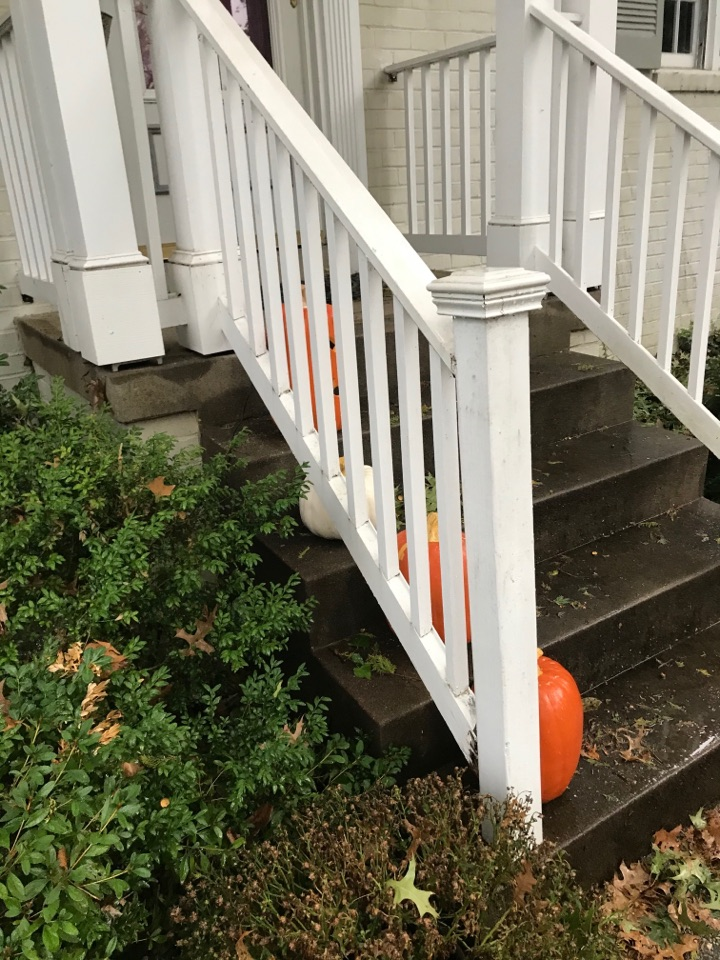 Bethesda, MD - Front porch repair
